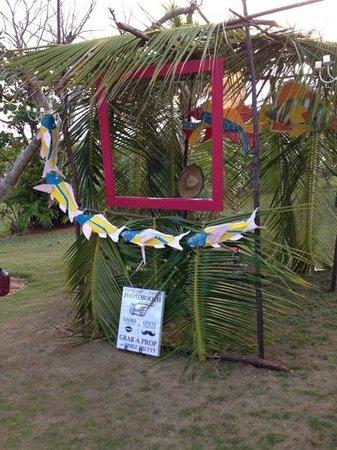 Rainbow Inn : wedding photo booth
