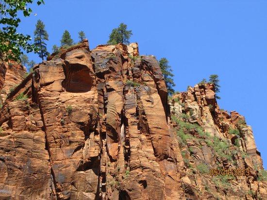 Red Mountain Resort : Zion