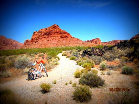 Red Mountain Resort: Biking on Inspiration Trail at Red Mountain