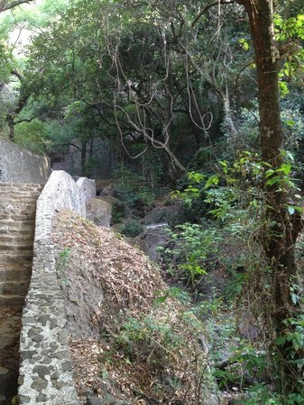 Tepozteco: The start of the path