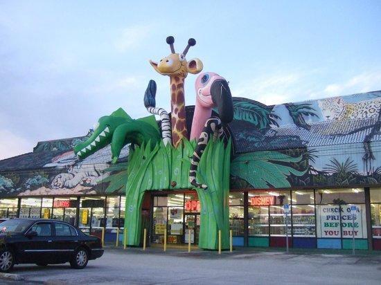 Knights Inn Maingate Kissimmee/Orlando: Muchos almacenes y atracciones al rededor del hotel