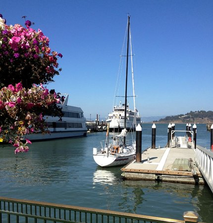North Coast Charters - Private Tours