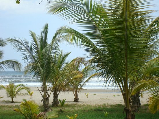 Barceló Montelimar Beach: Grounds