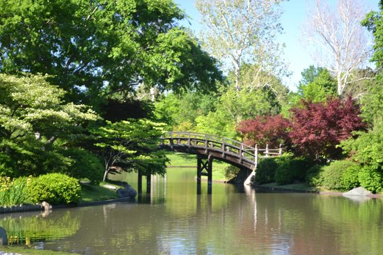 The Arabic Garden - Picture of Missouri Botanical Garden, Saint ...