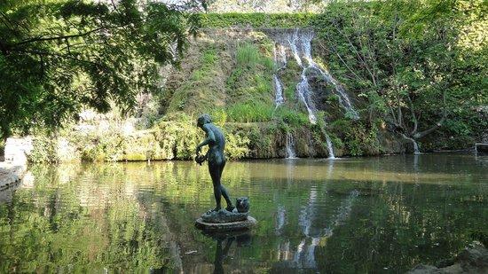Danubius Health Spa Resort Margitsziget: парк на острове Маргит