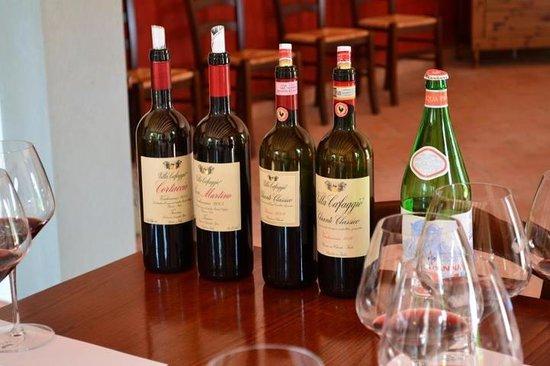Villa Cafaggio : Wine Tasting and Tour