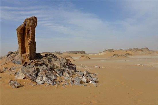 Western Desert : The White Desert
