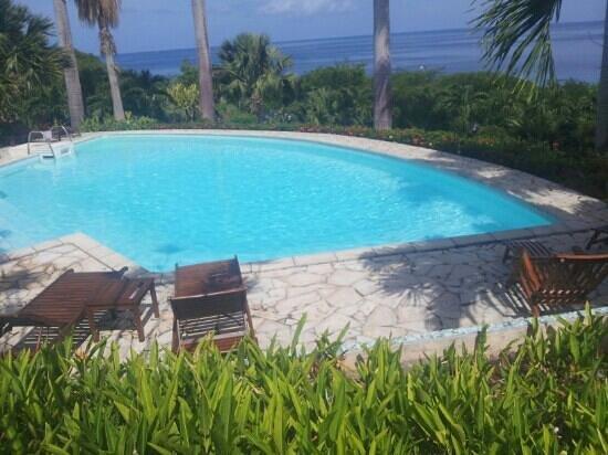 Hotel Au 'Ti Sucrier: vue sur la piscine et la mer.