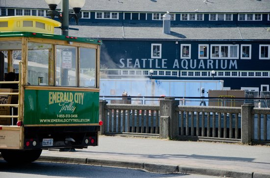 Emerald City Trolley Seattle 2018 All You Need To Know Before You Go With Photos Tripadvisor