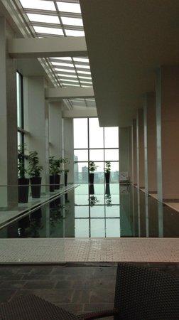 Conrad Tokyo: やはり綺麗なプール。少し浅いけど。