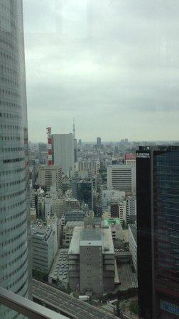 Conrad Tokyo: プールからは遠くにスカイツリー