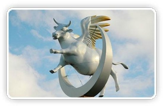 Flying Cow Picture Of Moooving Art Shepparton Shepparton