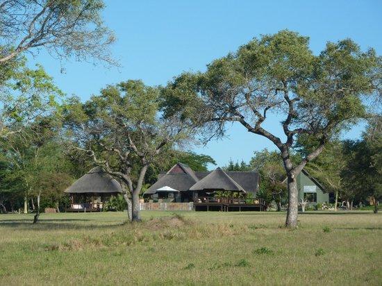 Nkorho Bush Lodge: Nkorho