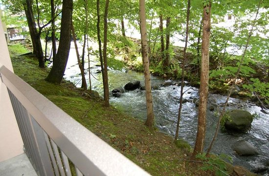 Hampton Inn Gatlinburg: View of creek from our patio (room 104)