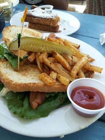 Mama's Boy : BLT sandwich
