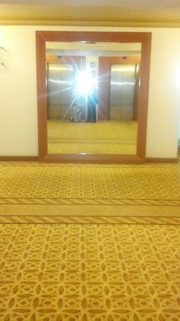 Hotel Lucerna Tijuana: elevators 2 floor