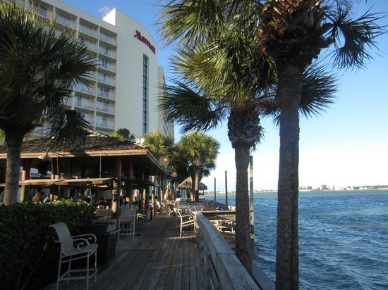 Clearwater Beach Marriott Suites on Sand Key: Hotel Grounds!