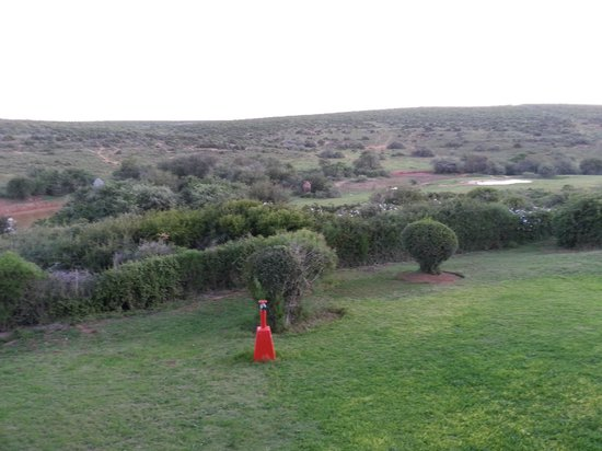 Addo Rest Camp: View from rondavel