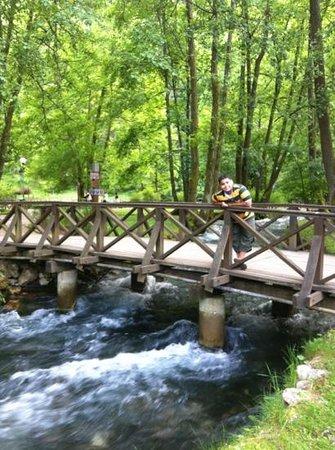 Vrelo Bosne: نبع البوسنة