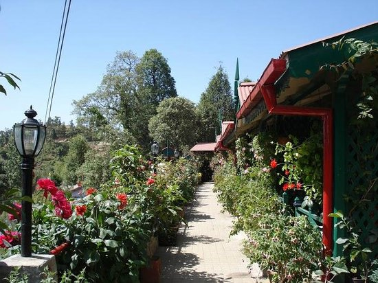 Mystic Mukteshwar Lodge: The Lodge is Full of Flowers & Fruit. Great Place To Saty.