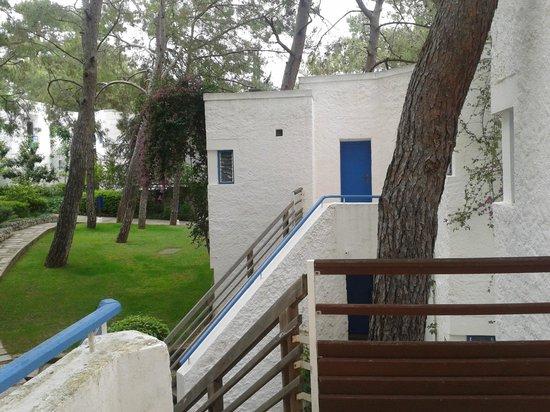 Club Med Kemer: Vue du bunglow chambre club