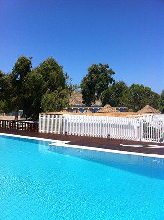 Coralli Camping: pool