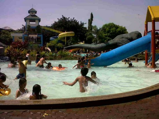Taman Hutan Tropis: slide for kids