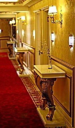 Hotel Buyuk Hamit : koridor
