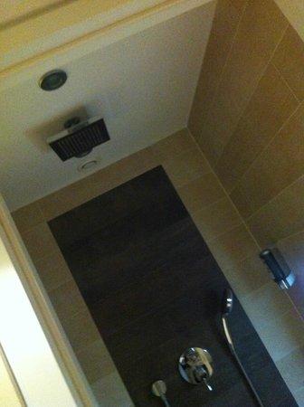 Hotel Herzog: Raindancedusche