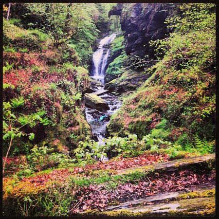 Tal-Y-Bont Country House B&B: Water fall and gorge on a 3hr walk near by