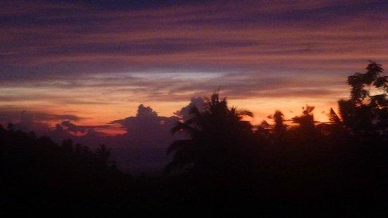 Bali Eco Stay Bungalows: Kept taking pics