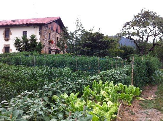 Casa Rural Jesuskoa: Huerto