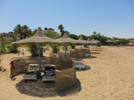 Toubia: Beach
