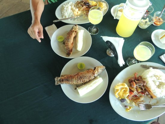 Curassow Amazon Lodge : Delicious fresh caught fish and lunch!