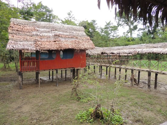 Curassow Amazon Lodge: My little piece of paradise