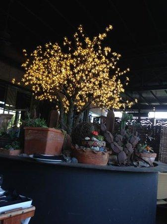 Roaring Fork: patio