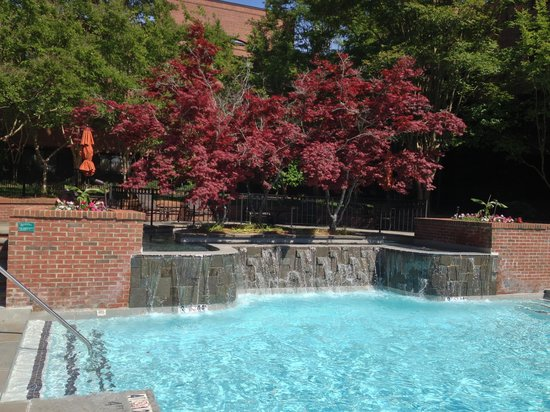DoubleTree Suites by Hilton Hotel Charlotte - SouthPark: Pool Waterfall