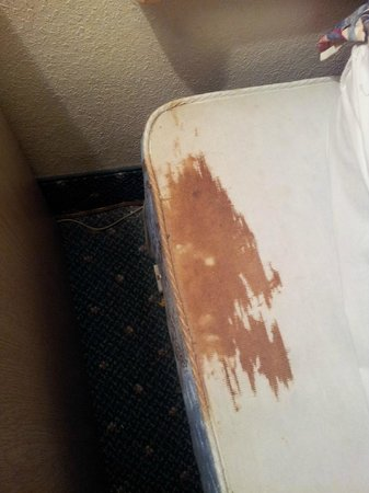 Siesta Beach Resort & Suites: bed stain