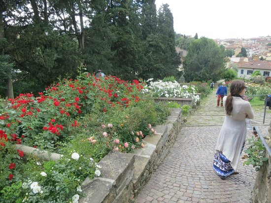 Folon e il Giardino delle Rose: Roses