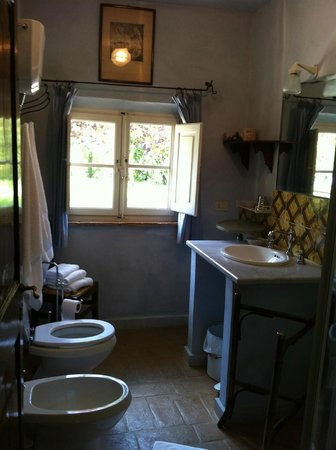 Villa La Lodola: bathroom