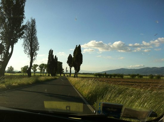 Villa La Lodola : road of the region