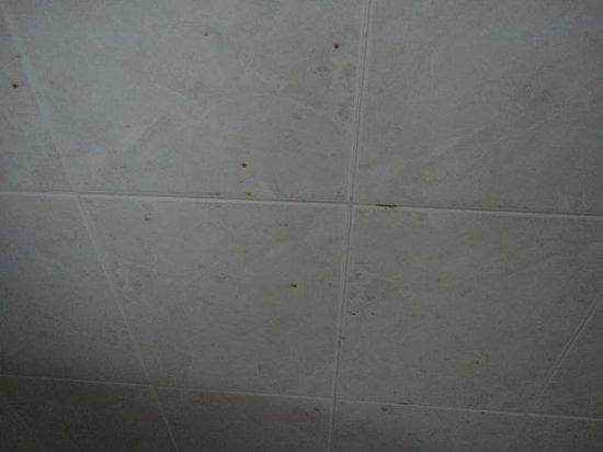 Piastrelle bagno sporche da vomito foto di nefeli hotel
