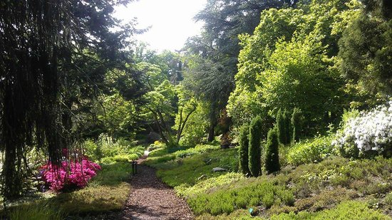 Botanischer Garten: im Heidegarten