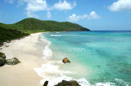 Guana Island : North Beach