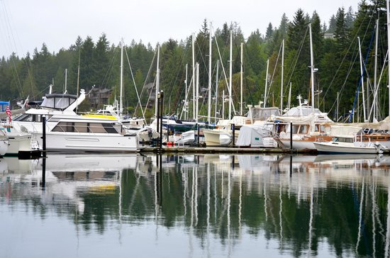 The Resort at Port Ludlow : Marina