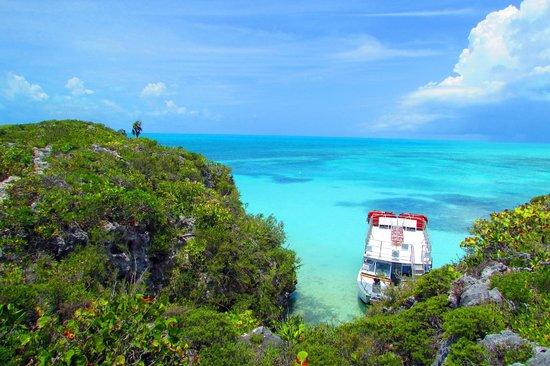 Ocean Outback