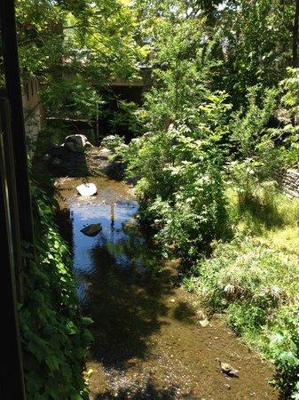 Novo: Creek running alongside