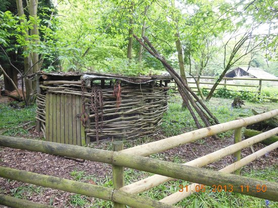 Druidstone Park: Druidstone