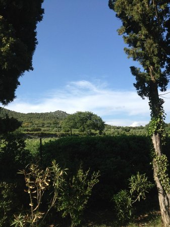 Chateau Juvenal: View from the castle