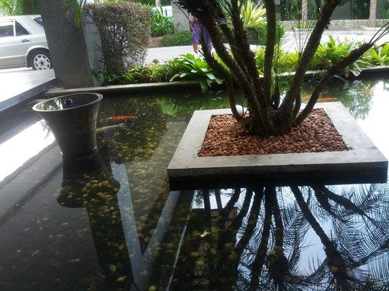 Wyndham Sea Pearl Resort Phuket: another carp pond